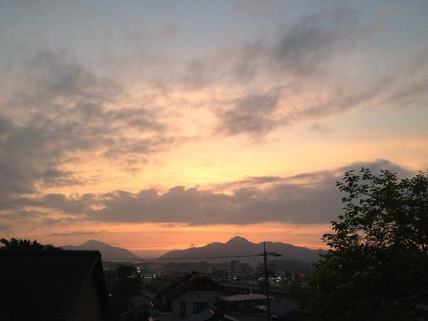 Img_iphone1298_shibainu