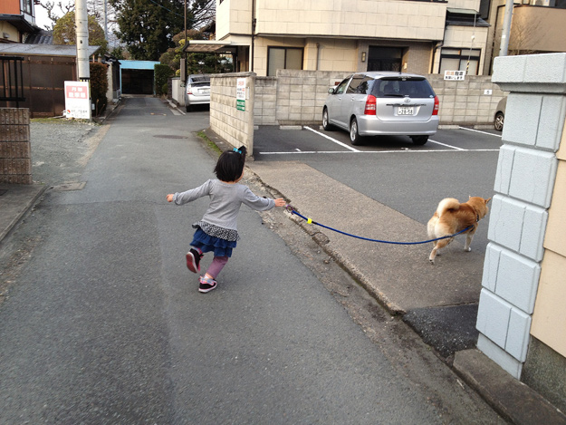 Img_iphone1242_shibainu