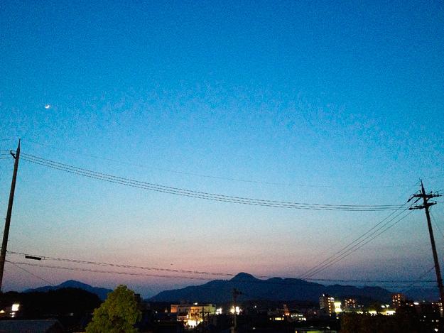 Img_iphone1337_shibainu