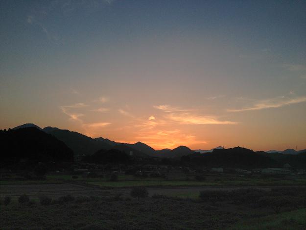 Simg_iphone1704_shibainu