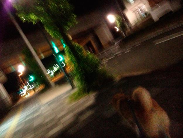 Simg_iphone1787_shibainu