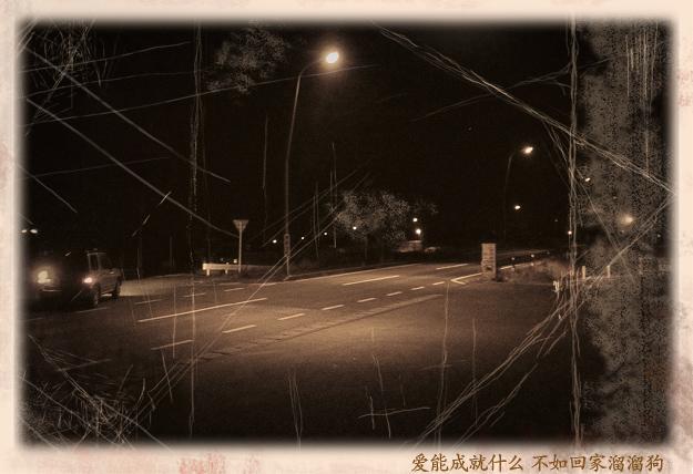Simg_iphone1832_shibainu