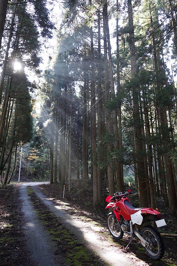 鳥取県八頭郡八頭町_xr650r