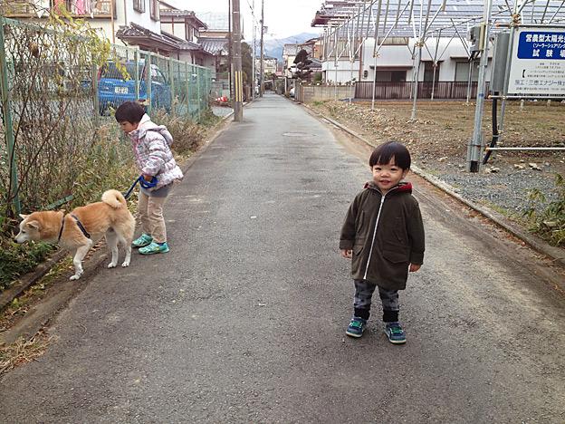 Simg_iphone2069_shibainu