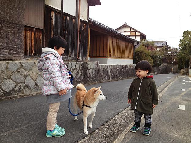 Simg_iphone2071_shibainu