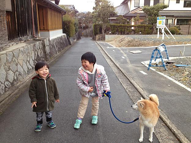 Simg_iphone2073_shibainu
