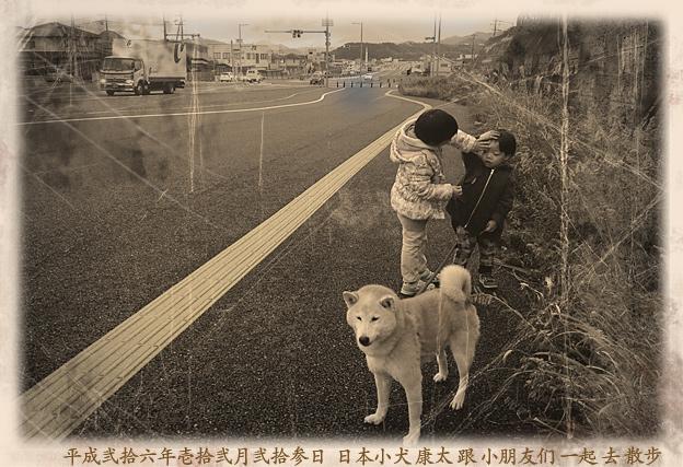 Simg_iphone2084_shibainu