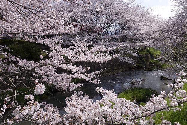 兵庫県丹波市春日町