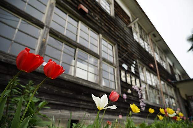 智頭町立富沢小学校