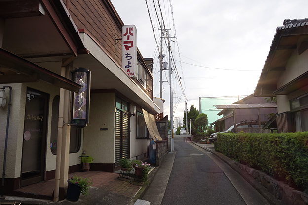Simg_iphone3064431_shibainu