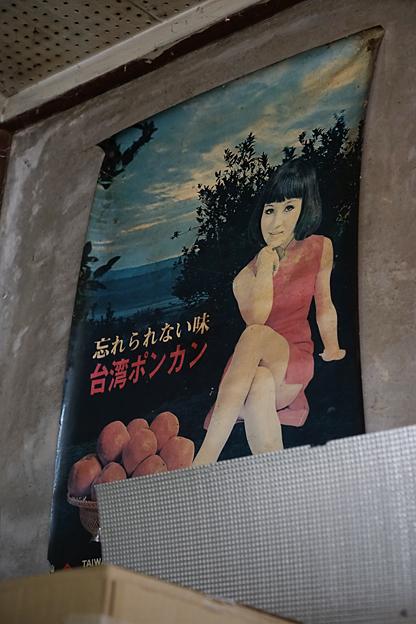 台湾ポンカン