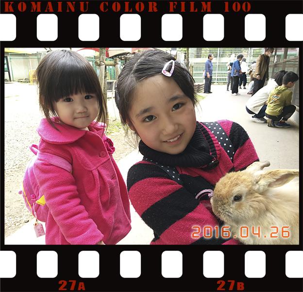 福知山市動物園 うさぎ