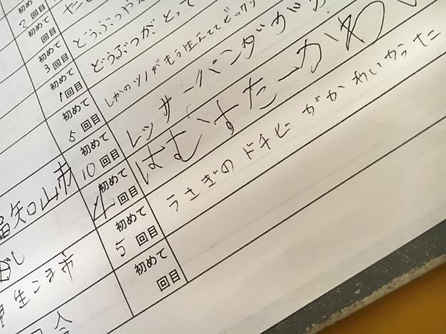 福知山市動物園のうさぎ