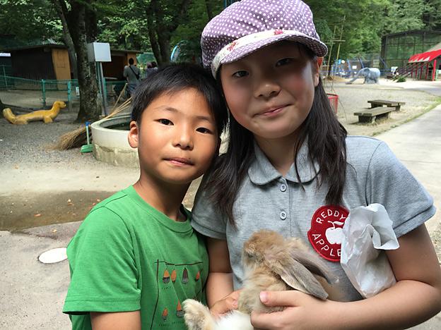 0045_rabbit