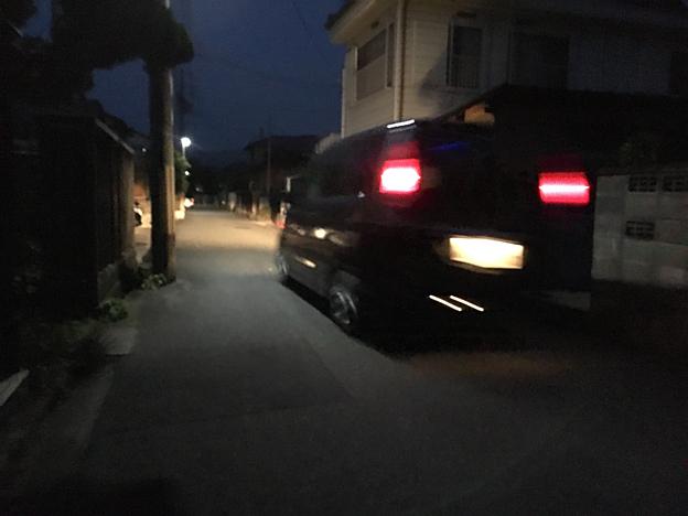 0176_shibainu_7