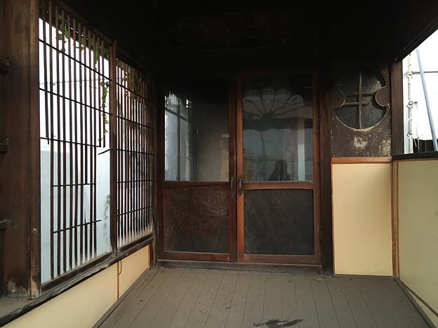 0238_shibainu_1