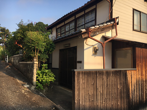 0364_shibainu_4