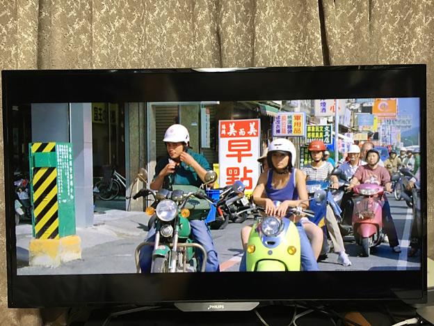 0515_shibainu_14_3