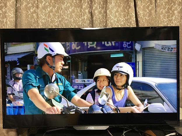 0515_shibainu_14_4