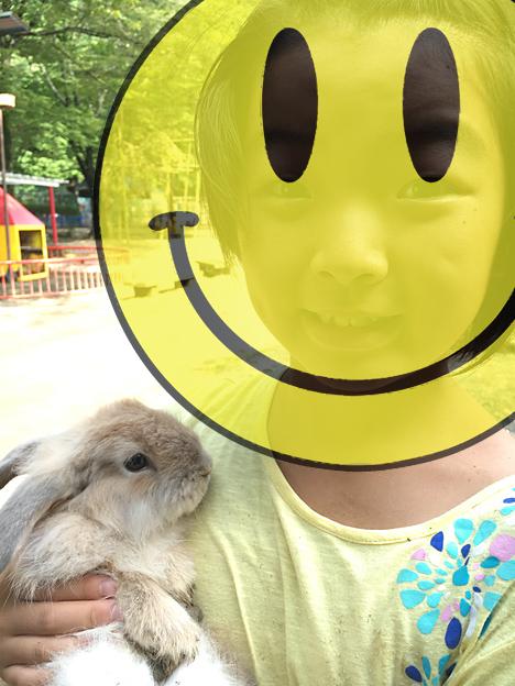 福知山市動物園のウサギ