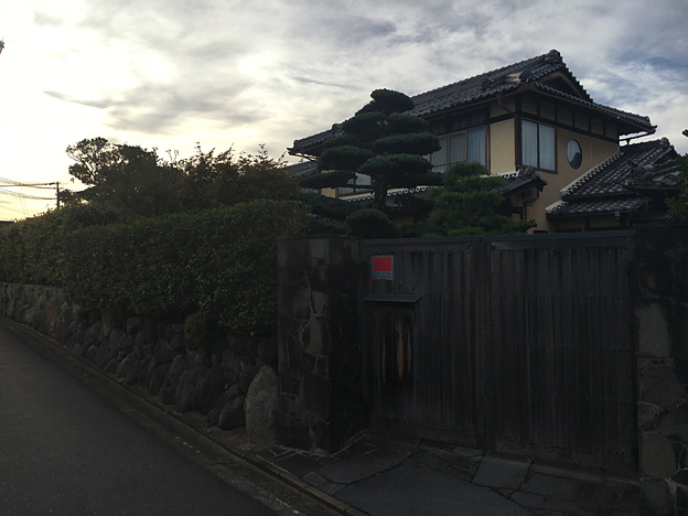 0652_shibainu_28