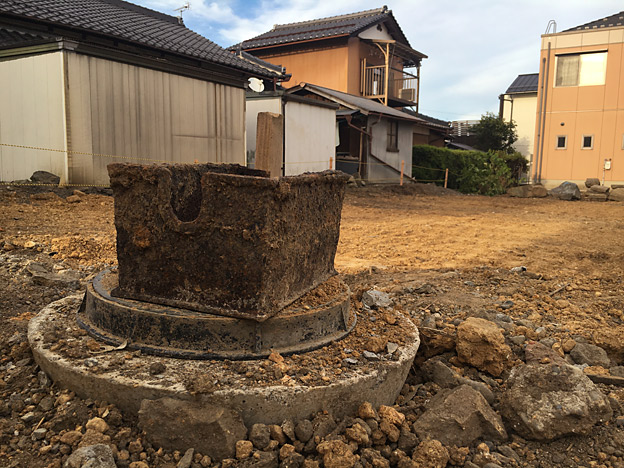 0654_shibainu_28