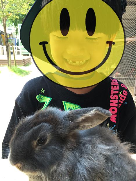 0181_rabbit_2