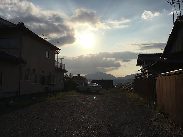 0719_shibainu_37